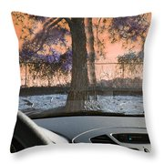 Drunk Drivers Last Mistake Throw Pillow
