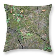 Dry And Thirsty Land Throw Pillow