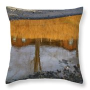 Dry Conditions Will Continue Throw Pillow