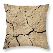 Dry Cracked Earth And Green Leaf Throw Pillow