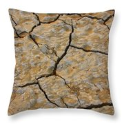 Dry Cracked Lake Bed Throw Pillow