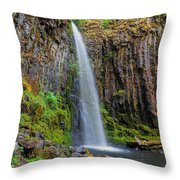 Dry Creek Falls Throw Pillow
