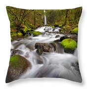 Dry Creek Falls In Spring Throw Pillow