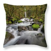 Dry Creek Falls In Springtime Throw Pillow