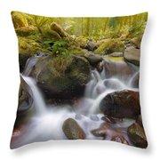 Dry Creek II Throw Pillow
