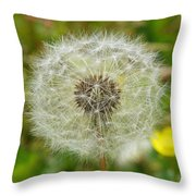 Dry Dandelion Throw Pillow