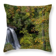 Dry Falls. Throw Pillow
