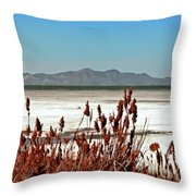 Dry Grasses At The Great Salt Lake Throw Pillow