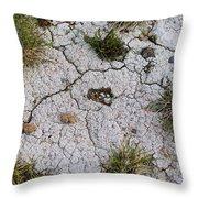 Dry Ground Throw Pillow