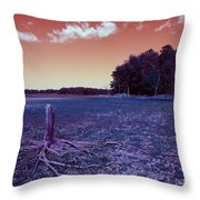 Dry Lake Infrared Throw Pillow