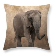 Dry Lands Throw Pillow