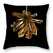Dry Leaf Collection 4 Throw Pillow