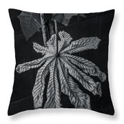 Dry Leaf Collection Bnw 2 Throw Pillow