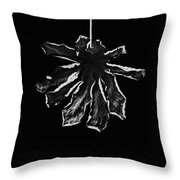 Dry Leaf Collection Bnw 3 Throw Pillow