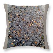 Dry Mudd Psl Throw Pillow