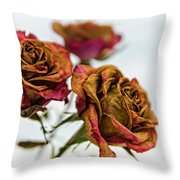 Dry Roses Throw Pillow