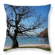 Dry Season Throw Pillow