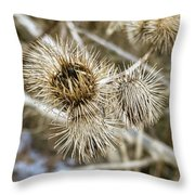 Dry Thistle Buds Throw Pillow