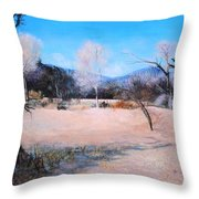 Dry Wash In Winter Throw Pillow