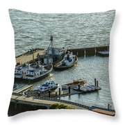 Dry Weight Throw Pillow