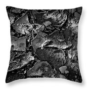 Dry Work Yard Throw Pillow