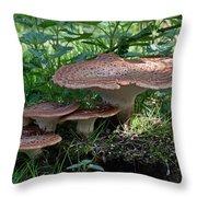 Dryad's Saddle Fungus Throw Pillow