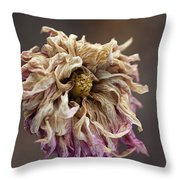 Drying And Aged Dahlia Throw Pillow
