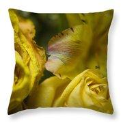 Drying Group - 310020 Throw Pillow