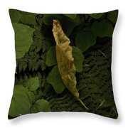 Drying Leaf In The Forest Throw Pillow