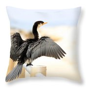 Drying Out Bird Throw Pillow