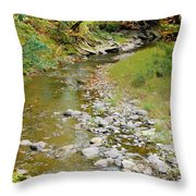 Drying Up River 3 Throw Pillow