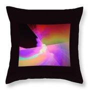 Dsc01560 Throw Pillow