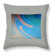 Dsc01578 Throw Pillow
