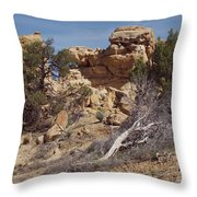 Dsc01894 Throw Pillow