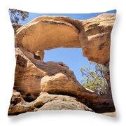 Dsc01900 Throw Pillow