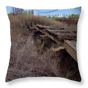 Dsc02077e Throw Pillow