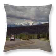 Dsc02087e Throw Pillow