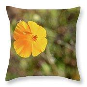 Dsc_1515 Web Throw Pillow