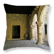 Dual Areches And Urns Throw Pillow