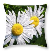 Dual Daisies Throw Pillow