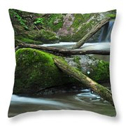 Dual Falls 2 Throw Pillow
