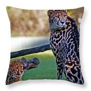 Dubbo Zoo Queen - King Cheetah And Cub Throw Pillow