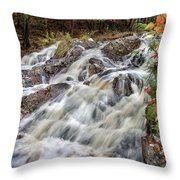 Duchesnay Falls Throw Pillow