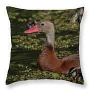 Duck 10 Throw Pillow