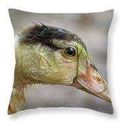 Duck 11 Throw Pillow