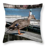 Duck About To Jump. Throw Pillow