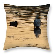 Duck And Swan At Sunrise Throw Pillow