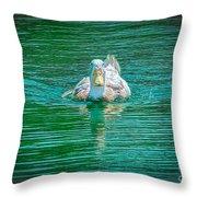 Duck - C Throw Pillow