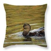 Duck Dip Throw Pillow