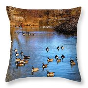 Duck Duck Goose Goose Throw Pillow